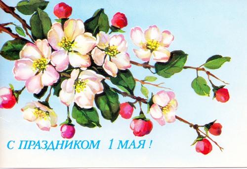Красивые открытки открытки рисованные с цветами