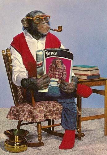 Открытки с днем рождения с обезьянками 90
